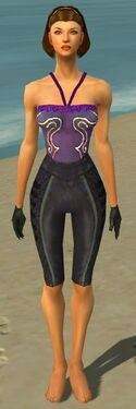 Mesmer Elite Rogue Armor F gray arms legs front