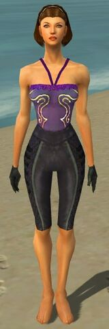 File:Mesmer Elite Rogue Armor F gray arms legs front.jpg