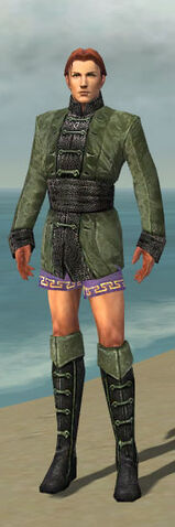 File:Mesmer Shing Jea Armor M gray chest feet front.jpg