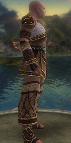 File:Monk Elite Canthan Armor M gray side alternate.jpg
