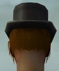 File:Formal Attire M dyed head back.jpg