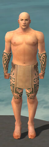 File:Monk Star Armor M gray arms legs front.jpg