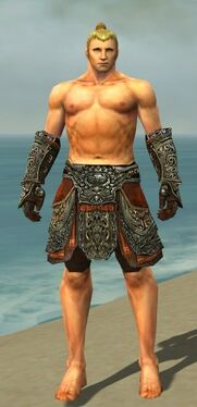 Warrior Elite Canthan Armor M gray arms legs front