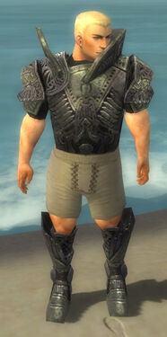 Warrior Elite Platemail Armor M gray chest feet front