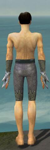 File:Elementalist Iceforged Armor M gray arms legs back.jpg