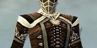 Ranger Kurzick armor