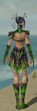 Necromancer Elite Cabal Armor F dyed back