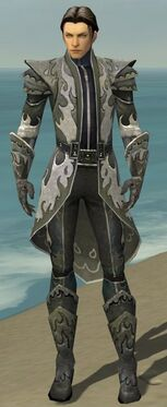 Elementalist Elite Flameforged Armor M gray front