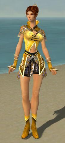 File:Elementalist Shing Jea Armor F dyed front.jpg