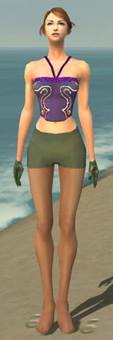 File:Mesmer Enchanter Armor F gray arms legs front.jpg
