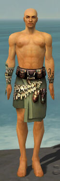 Ritualist Canthan Armor M gray arms legs front