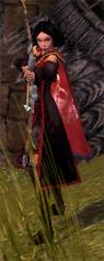 File:Crimson Skull Raider.jpg