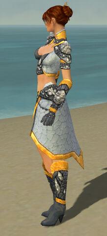 File:Elementalist Stoneforged Armor F dyed side.jpg