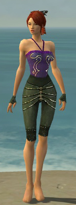 File:Mesmer Elite Luxon Armor F gray arms legs front.jpg