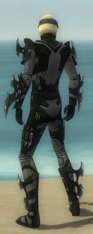 File:Assassin Kurzick Armor M gray back.jpg
