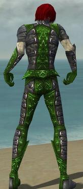 Necromancer Ascalon Armor M dyed back