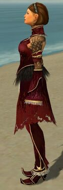 Mesmer Primeval Armor F dyed side