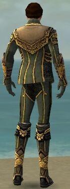 Mesmer Asuran Armor M gray back