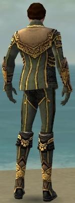 File:Mesmer Asuran Armor M gray back.jpg