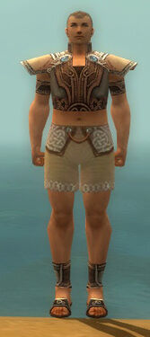 Monk Asuran Armor M gray chest feet front