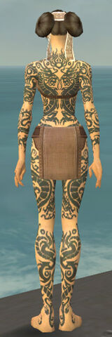File:Monk Dragon Armor F gray back.jpg