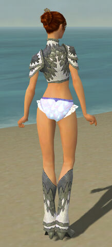 File:Elementalist Iceforged Armor F gray chest feet back.jpg