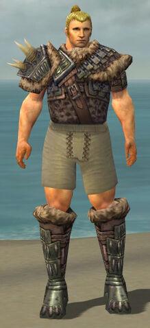 File:Warrior Charr Hide Armor M gray chest feet front.jpg