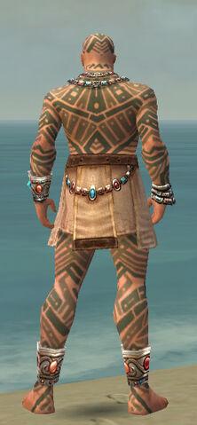 File:Monk Labyrinthine Armor M gray back.jpg
