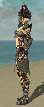Ritualist Obsidian Armor F gray side