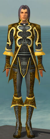 File:Elementalist Elite Canthan Armor M dyed front.jpg