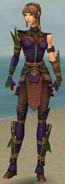 Ranger Druid Armor F dyed front