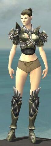 File:Warrior Templar Armor F gray chest feet front.jpg
