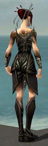 File:Necromancer Istani Armor F gray back.jpg