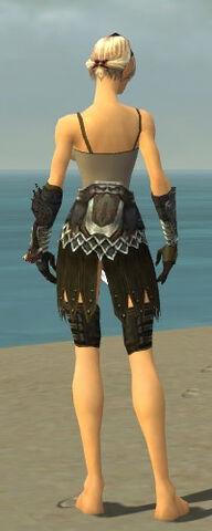 File:Warrior Silver Eagle Armor F gray arms legs back.jpg