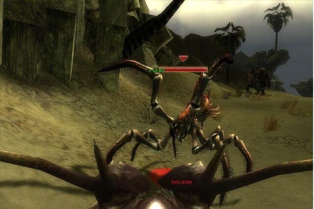 File:Dune Spider.jpg