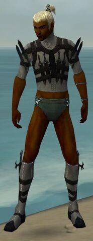 File:Assassin Obsidian Armor M gray chest feet front.jpg