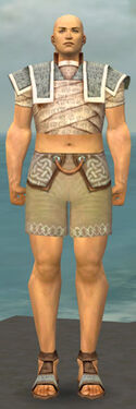 Monk Woven Armor M gray chest feet front