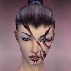 File:Necromancer Asuran Armor F dyed head front.jpg
