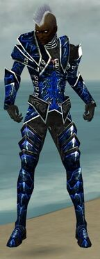 Necromancer Fanatic Armor M dyed front