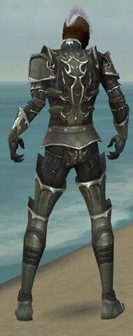 File:Necromancer Tyrian Armor M gray back.jpg