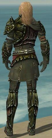 File:Ranger Elite Luxon Armor M gray back.jpg