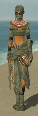 Ritualist Ancient Armor F gray back