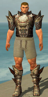 Warrior Monument Armor M gray chest feet front