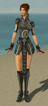 Elementalist Canthan Armor F gray front