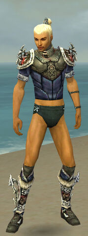 File:Assassin Norn Armor M gray chest feet front.jpg