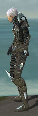 Necromancer Profane Armor M gray side