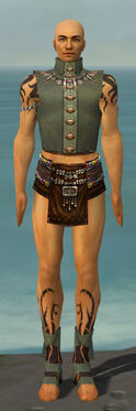 Ritualist Shing Jea Armor M gray chest feet front