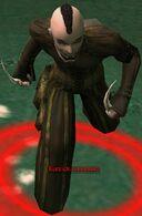 Kurzick Assassin