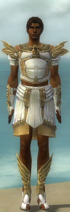 File:Paragon Ancient Armor M dyed front.jpg