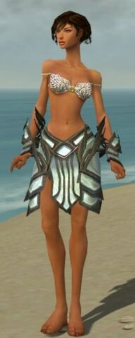 File:Paragon Primeval Armor F gray arms legs front.jpg
